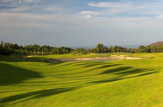 Sealinks golf2