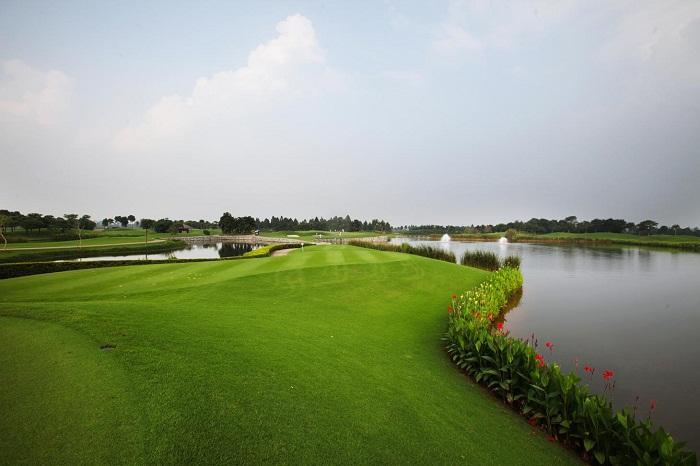 Vân trì golf2