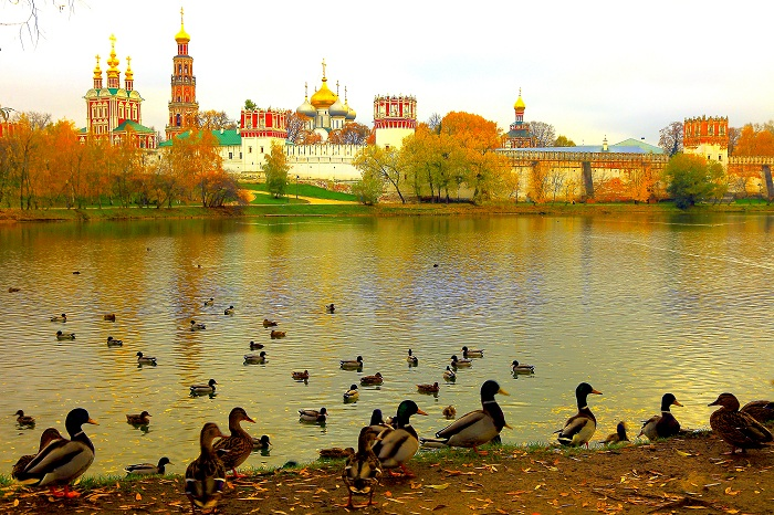 You can see my collection of photos of Moscow (Red Square, Kremlin, Novodevichy, Russian architecture, communist soviet architecture, Lenin Statues, Russian onion dome churches and cathedrals, etc.) and Golden Ring (Suzdal) in the following link below: