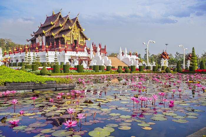 Chiang Mai – - Thailand's rose of the North