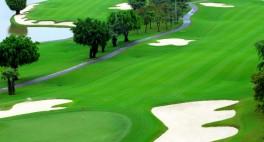 golf.4